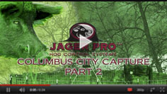 Hog Trapping - Columbus City (2)
