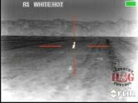 thumbnail.coyote-100-southern-hog-control-v1